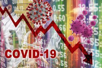 MEDIDAS A NIVEL DE GOBIERNO CONTRA EL IMPACTO DISRUPTIVO COVID-19